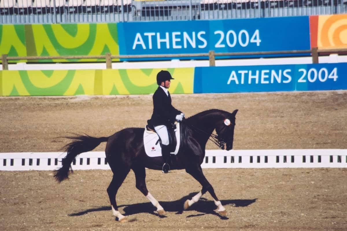 equestrian sport athens 2004 image page (4)